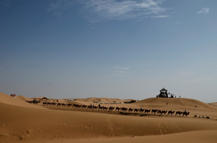 Excellent 46 Caravans On The Silk Road